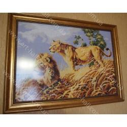 Картина «Африканские львы»